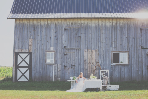 bohemian styled wedding shoot